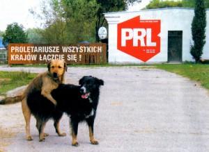 PRL 01_resize